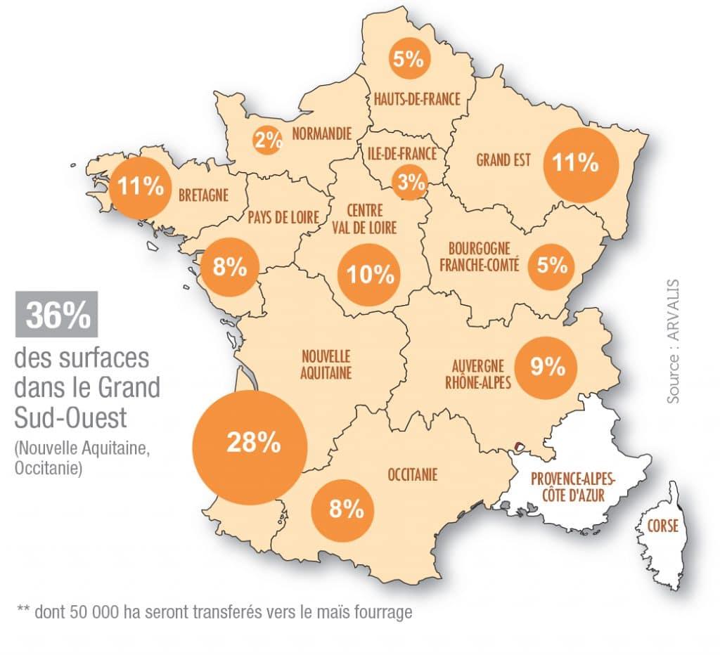 Production maïs grains en France 2020