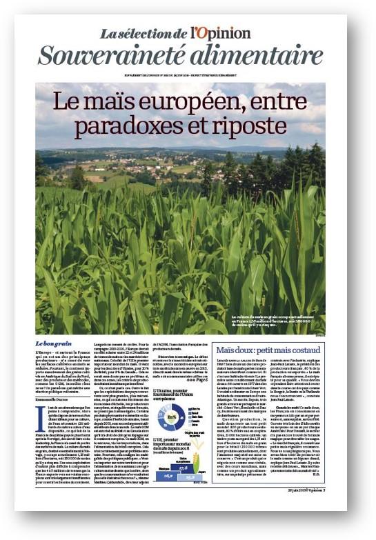 Dossier spécial maïs de 4 pages dans le numéro du 26 juin de l'Opinion