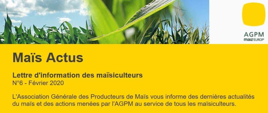 Maïs actus numéro 6 de février 2020 est une lettre d'information des maïsiculteurs envoyée par l'association générale des producteurs de maïs pour faire connaître ses actions