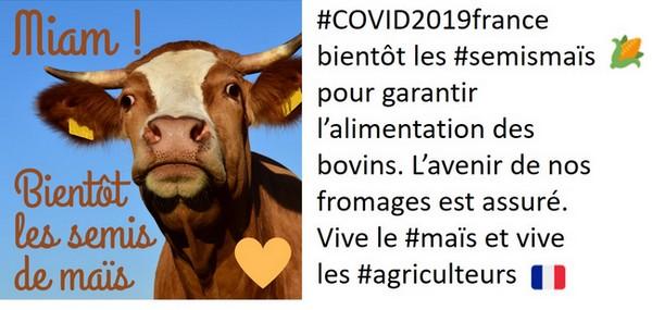 tweet de la campagne semis de maïs sur les fromages du lundi 6 avril