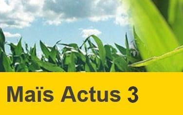 maïs actus 3 decembre 2018