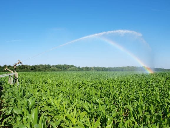 L'irrigation permet de sécuriser l'approvisionnement en eau dans les territoires
