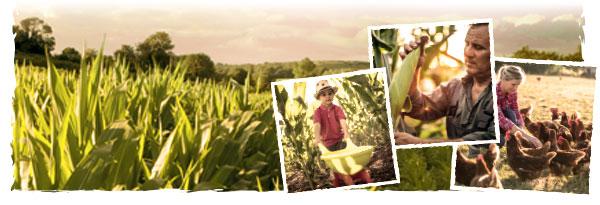 ambitions maïs 2025 congrès maïs 2020