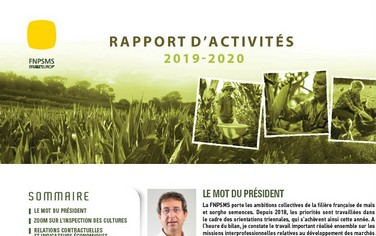 Rapport activités FNPSMS 2020
