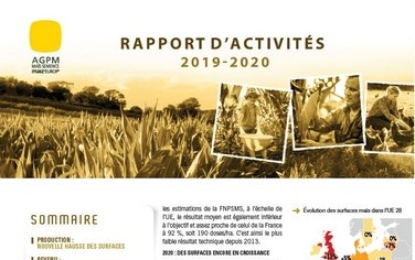 rapport activités maïs semence 2020