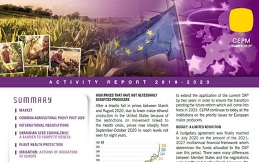 CEPM Activity report 2020